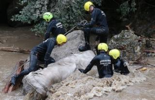 Araklı'daki selde kaybolan 3 kişiyi arama çalışmaları...