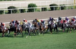 At yarışlarında 'derbi' heyecanı