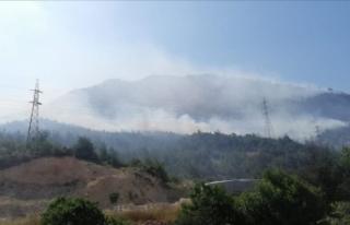 Bilecik'te çıkan orman yangınına müdahale...