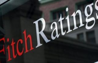 Fitch Ratings Yönetici Direktörü Parker: Türkiye'de...