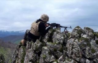 Bahar ve yaz operasyonlarında 14 terörist etkisiz...