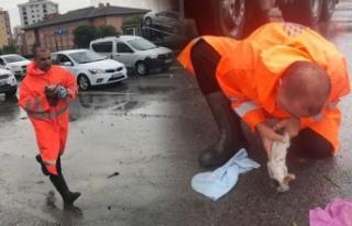 Sel sularına kapılan yavru kedi, belediye işçisinin...