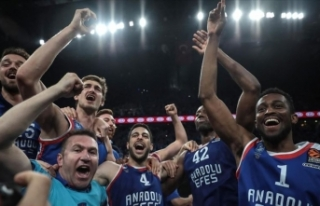 Anadolu Efes'e Avrupa Ligi'nden ödül