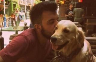 Bilirkişi 'paylaşılamayan köpek' hakkındaki...