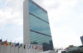 BM İnsan Hakları Konseyi'ne üye 22 ülkeden...