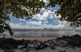 Çevreciler Pasifik Okyanusu'ndan 40 tondan fazla...