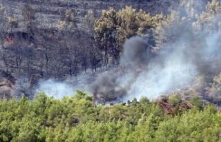 Fethiye'de çıkan yangına hava araçlarıyla...