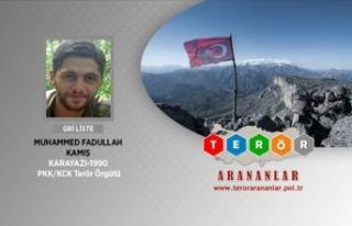 Gri kategorideki terörist Erzurum'da yakalandı
