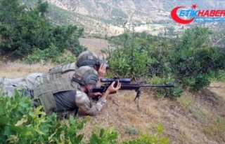 PKK ve MLKP'nin terör iş birliği ortaya çıktı