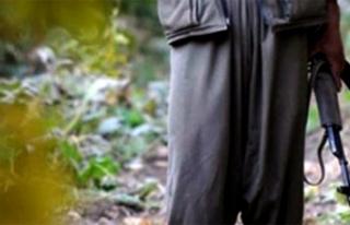 Siirt-Eruh kırsalında 2 terörist ölü olarak ele...