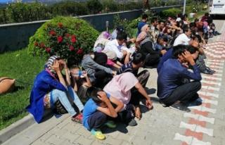18 kişilik minibüsten 54 mülteci çıktı
