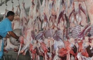 'Acemi kasaplar nedeniyle etin yüzde 15'i...