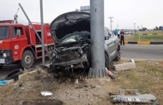 Otomobille cipin çarpıştığı kazada araçlar...