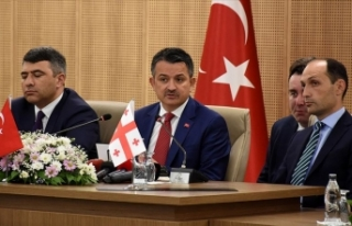 Türkiye, Azerbaycan ve Gürcistan'dan fındık...