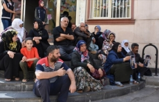 Diyarbakır annelerinin oturma eylemine katılım...