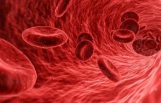 Kızamık vücuda enfeksiyonla mücadeleyi unutturuyor