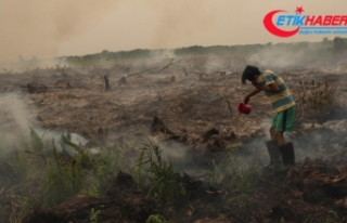 Malezya'da hava kirliliği nedeniyle 400'den fazla...