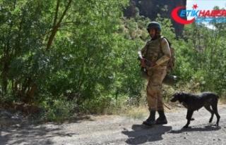 Van'da terör örgütü PKK'ya ait toprağa...