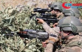 Yüksekova'da PKK'ya ait yaşam malzemesi ele...