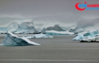 'Antarktika'daki buz kopmasının iklim...