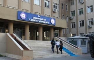 Şırnak'ta sosyal medya propagandasına operasyon:...