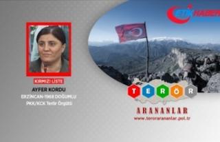 Terör örgütü PKK'nın kadın yapılanması...