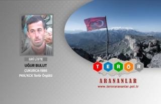 Tunceli'deki operasyonda gri kategorideki terörist...