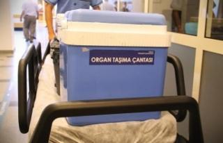 Türkiye'den dünyaya organ nakli eğitimi