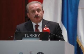 'Türkiye Suriye'de kalıcı barışın...