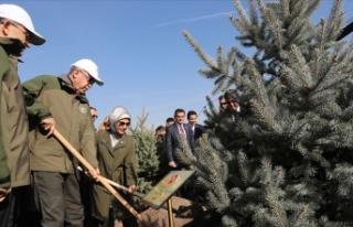 Cumhurbaşkanı Erdoğan: Orman varlığımızı 17...
