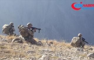 Erzincan'da sığınak ve mağaralara operasyon