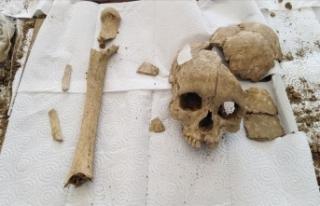 Şapinuva Antik Kenti'nde 3500 yıllık insan...