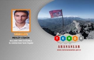 Terör örgütü El Kaide üyesi İstanbul'da...