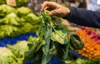 Uzmanlardan yapraklı sebzelerin bilinçli tüketimine...