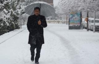 Erzurum, Ağrı, Kars ve Ardahan'da kar yağışı...
