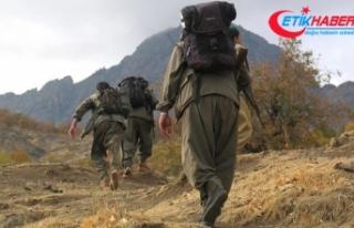 Jandarmanın iknasıyla terör örgütü PKK'da...