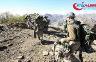 'Kıran-7 Munzur Vadisi Operasyonu' 2 bin...