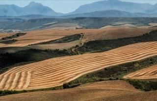 Tarım arazileri ve 2B taşınmazlarının satış...