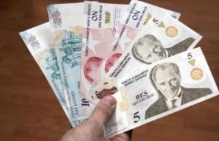Yeni Türk Lirası banknotların zaman aşımı yıl...