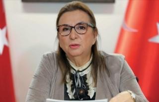 Bakan Pekcan: Müteahhitlerin yurt dışı proje büyüklüğü...