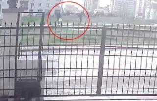 Batıkent'te sokak köpeklerinin öldürülmesine...