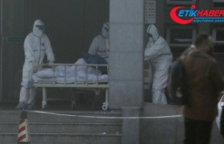 Corona virüsünden ölenlerin sayısı 26'ya yükseldi
