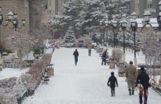 Kars, Ağrı ile Tunceli'de kar ve tipi etkili...