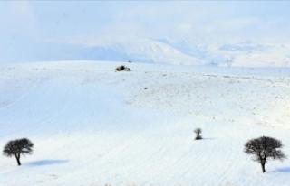 Doğu Anadolu'da üç ilde 179 yerleşim birimine...