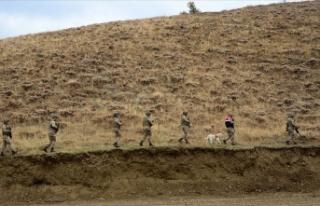 Jandarmanın ikna ettiği sorumlu düzeydeki PKK'lı...