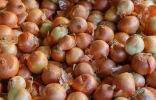 Kayısı ve kuru soğan üretimi 'güldürdü',...
