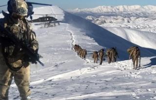 Mehmetçik teröristlerin kış üstlenmesine darbe...
