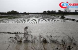 Mersin ve Antalya'da sağanak nedeniyle tarım...