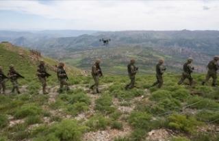 PKK'nın üst düzey kadın yöneticisine MİT...