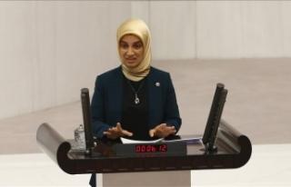 TBMM AB Karma Parlamento Komisyonu Başkanı Karayel'den...